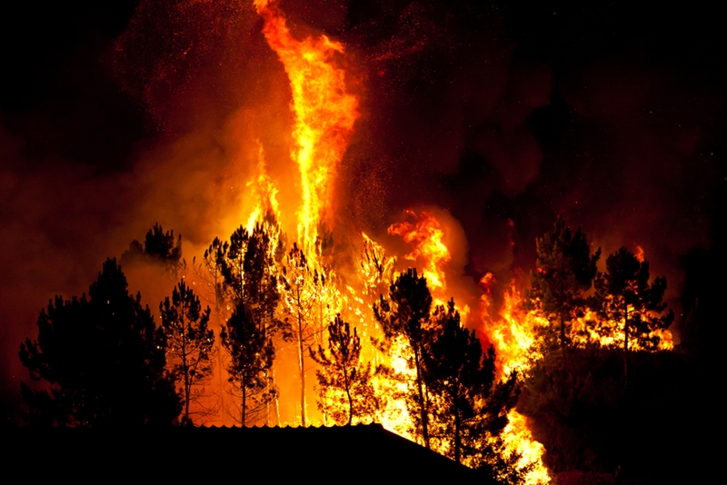 Forest fires have been a major issue in the Northwest.