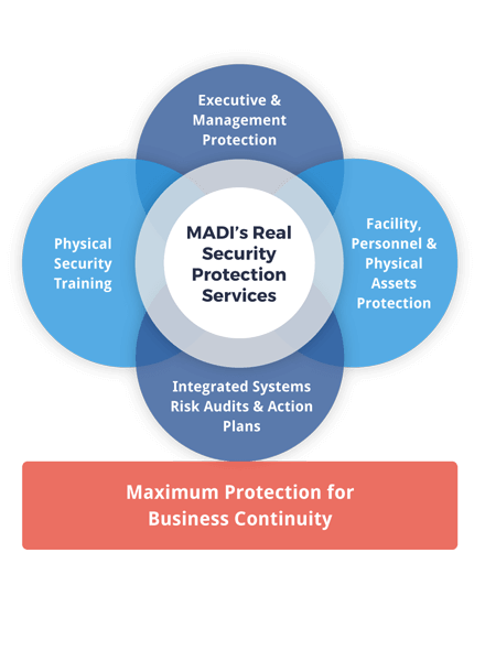 executive-security-solution--integrated-physical-security-system-design.png