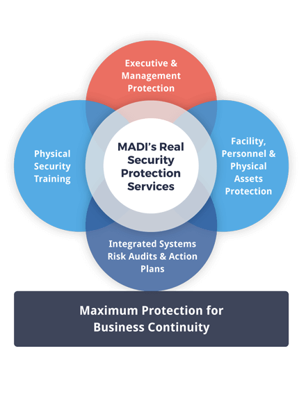 executive-security-solutions--venn-diagram-highlight