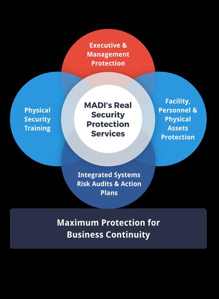 executive-security-solutions--venn-diagram-highlight